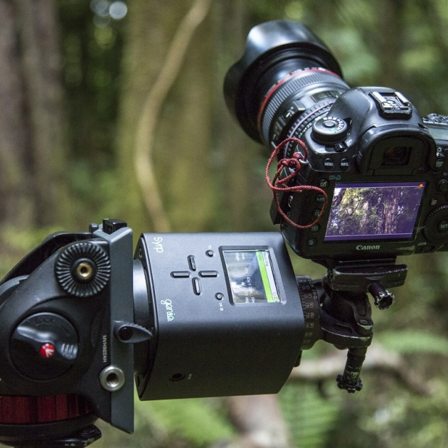 Cutting edge photography set ups were used to capture never seen before forest images 1200